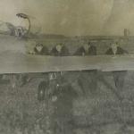 """Перемещение Л-29 по аэродрому, или """"закат солнца вручную"""". Аэродром Таловая, 1983 г."""