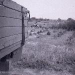 Место гибели курсанта Кузнецова Э. Г. (близ шоссе Москва - Волгоград, недалеко от  аэродрома Ново-Поворино, Волгоградская область, на посадочном между дальним и ближним...). 15 августа 1989 года. Через несколько часов после катастрофы.