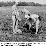Уверенно чувствовали себя не только в небе, но и на картофельном поле. Институт имени докучаева, пгт Таловая, 1976 год.