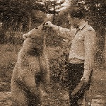 Медведь любит конфеты